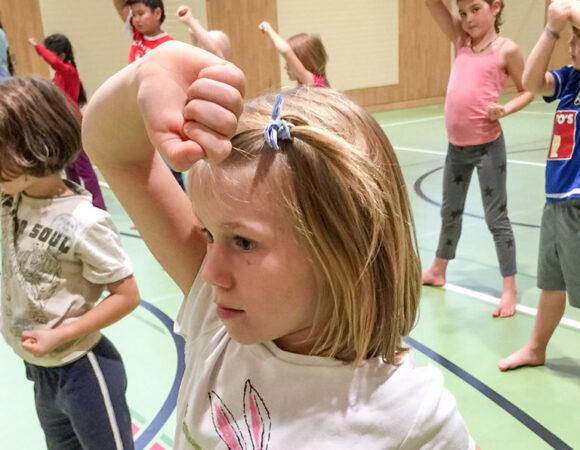 Freiwilliger Schulsport, Schule Geissenstein, Luzern 2014