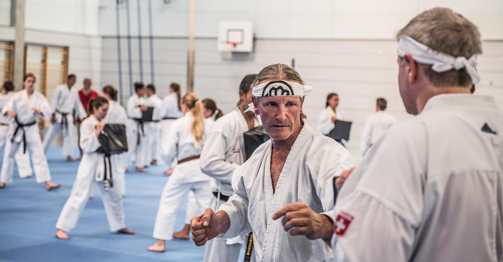 Karate für Erwachsene | Karateschule Kimura Shukokai Luzern #1
