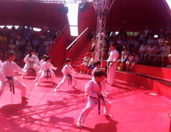 Karateshow Seerose Luzern 2015
